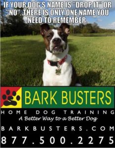 #BarkbustersLasVegasdogtraining #dogsofBarkBusters #dogtrainer