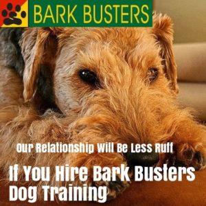 #dogtrainiglasvegas, #bestdogtrainerslasvegas
